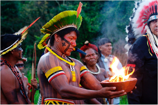 Kayapo society